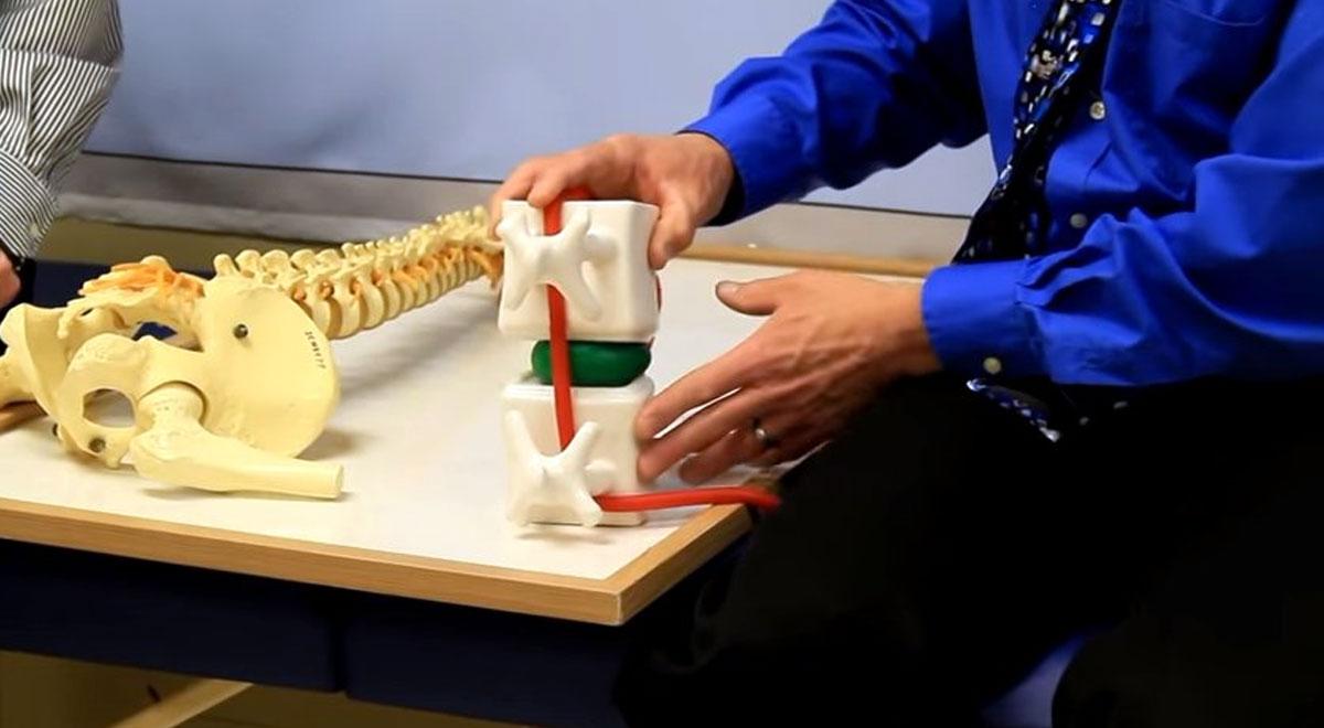 Nervio Ciático » Anatomía, Lesión, Pinzamiento y Irritación